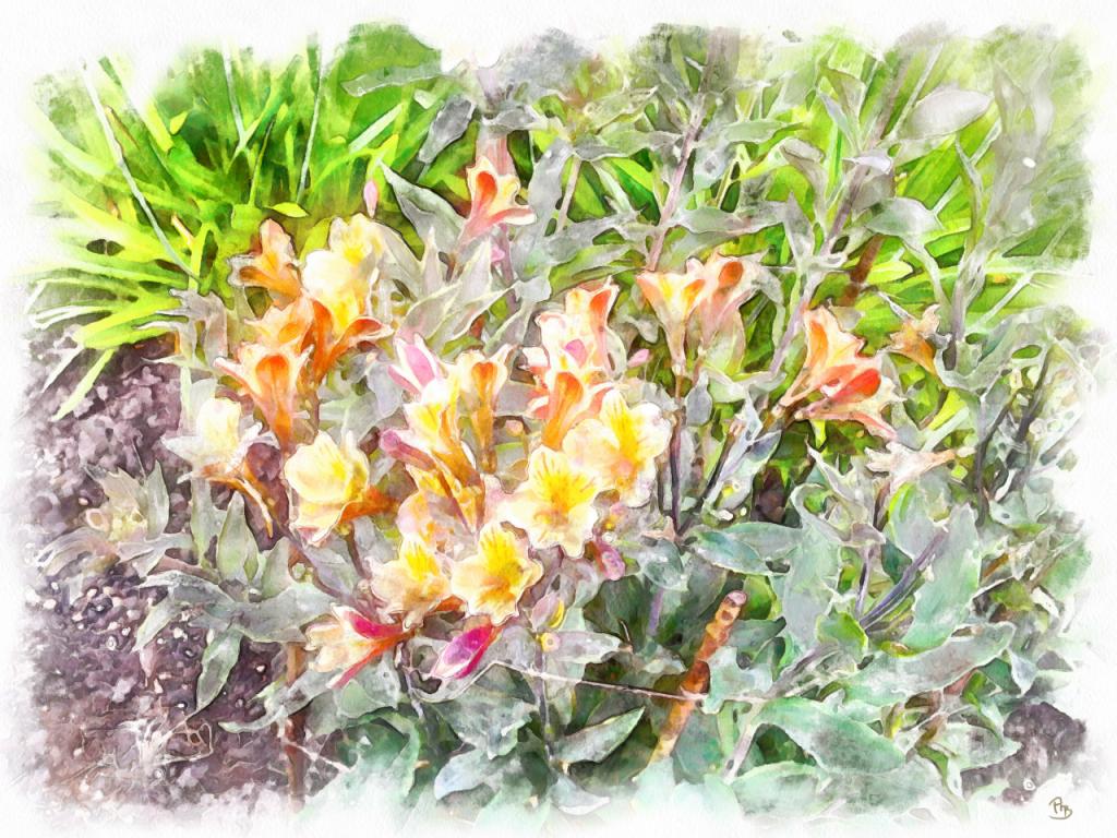 Little-yellow-Flowers